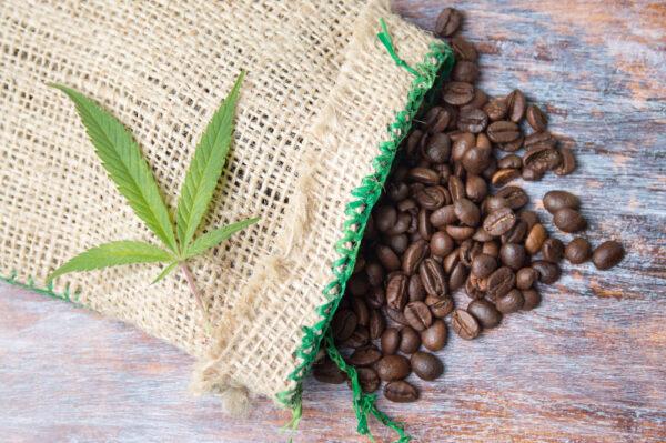 coffee cannabis CBD