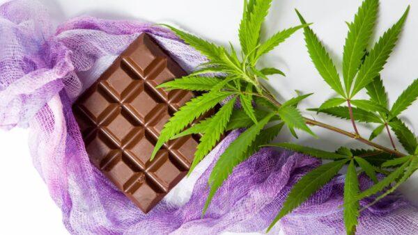chocolate cannabis milk dark