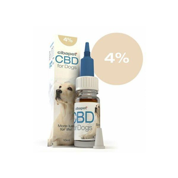 oil cbd pet dogs