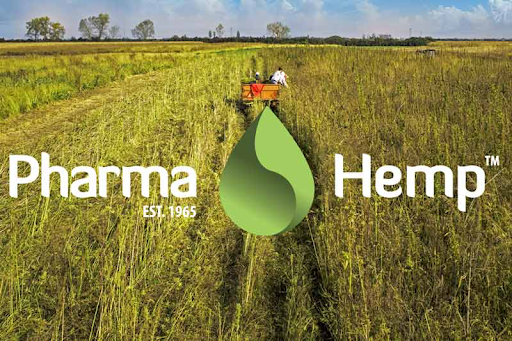 PharmaHemp Full Spectrum 90% CBD Crumble cânhamo