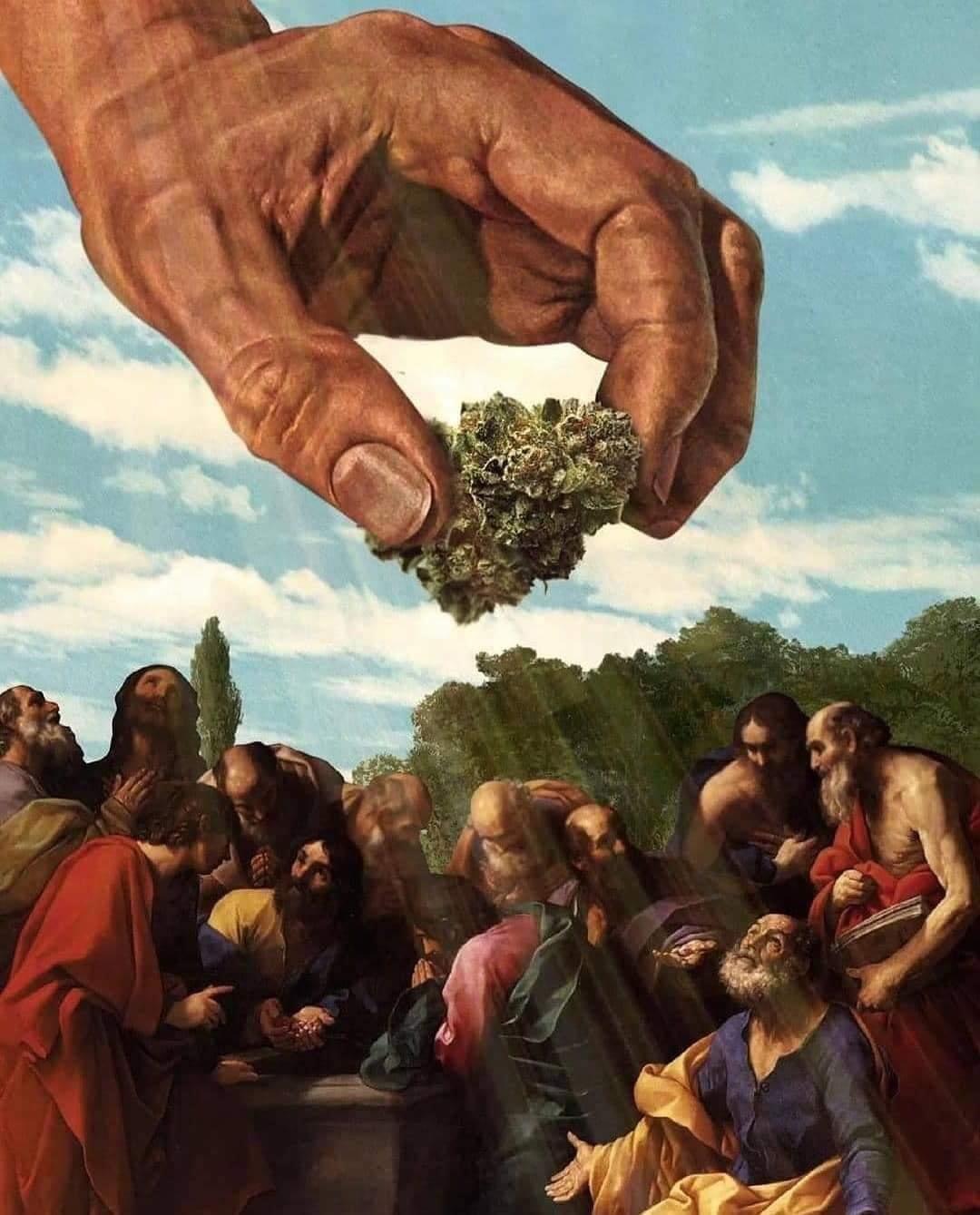 Imagem de mão descendo do céu com uma flor de cannabis